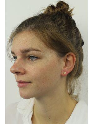 18 Kt vergulde zilveren ONNO oorsteker | OS0047PL | thumbnail image