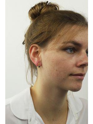 18 Kt vergulde zilveren ONNO oorsteker | OS0409PL | Base image